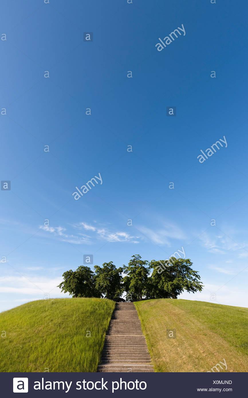 Las escaleras a los árboles en la colina Foto de stock