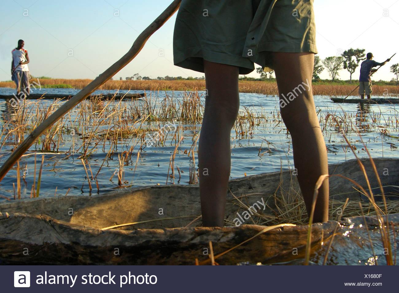 Mokoro viaje en el Delta del Okavango Botswana Imagen De Stock