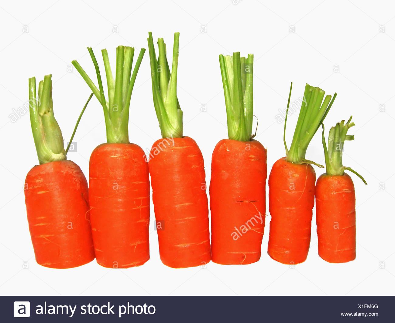 Zanahoria Zanahoria Carotin Vegetal Vitaminas Vitaminas Vegetales Zanahoria Zanahorias Fotografia De Stock Alamy De la zanahoria suele decirse que ayuda a broncear la piel y que es buena para la vista, pero más allá de estos efectos, la mayoría de los mortales desconoce la cantidad de beneficios que reporta al. alamy