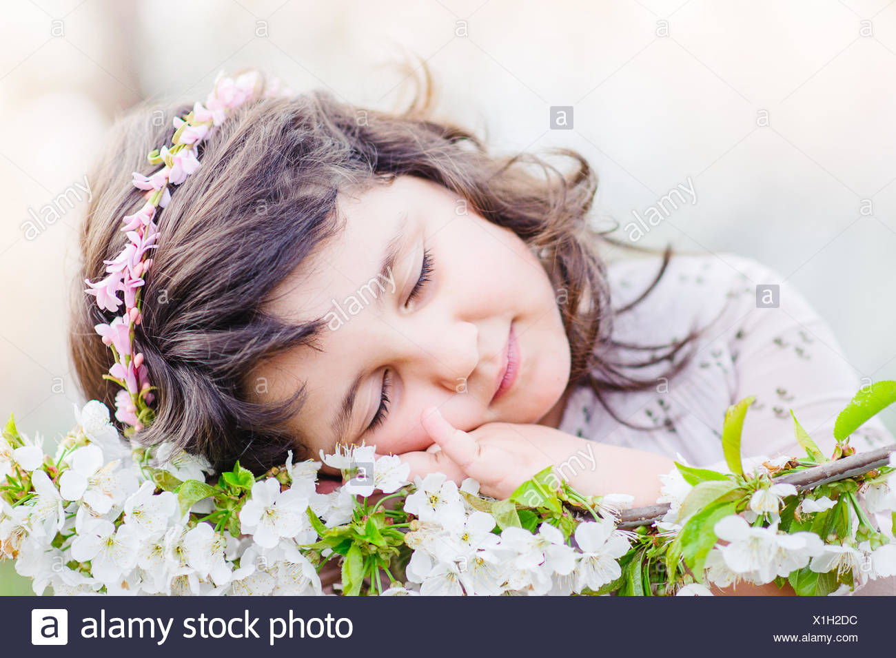Cute girl (4-5) Dormir en flores Foto de stock