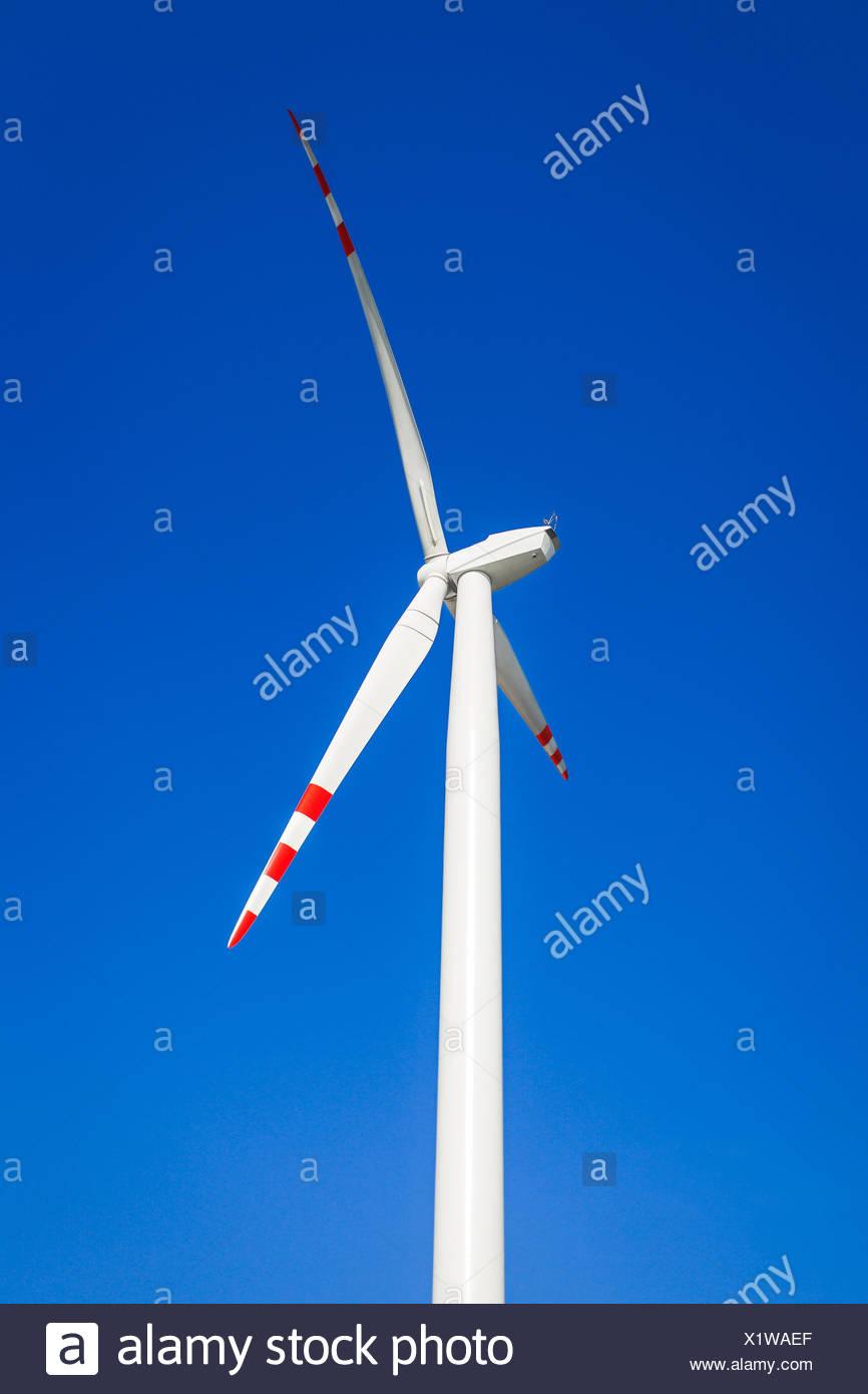 Aerogenerador en un cielo azul sin nubes. Legnickie Pole, Polonia Imagen De Stock