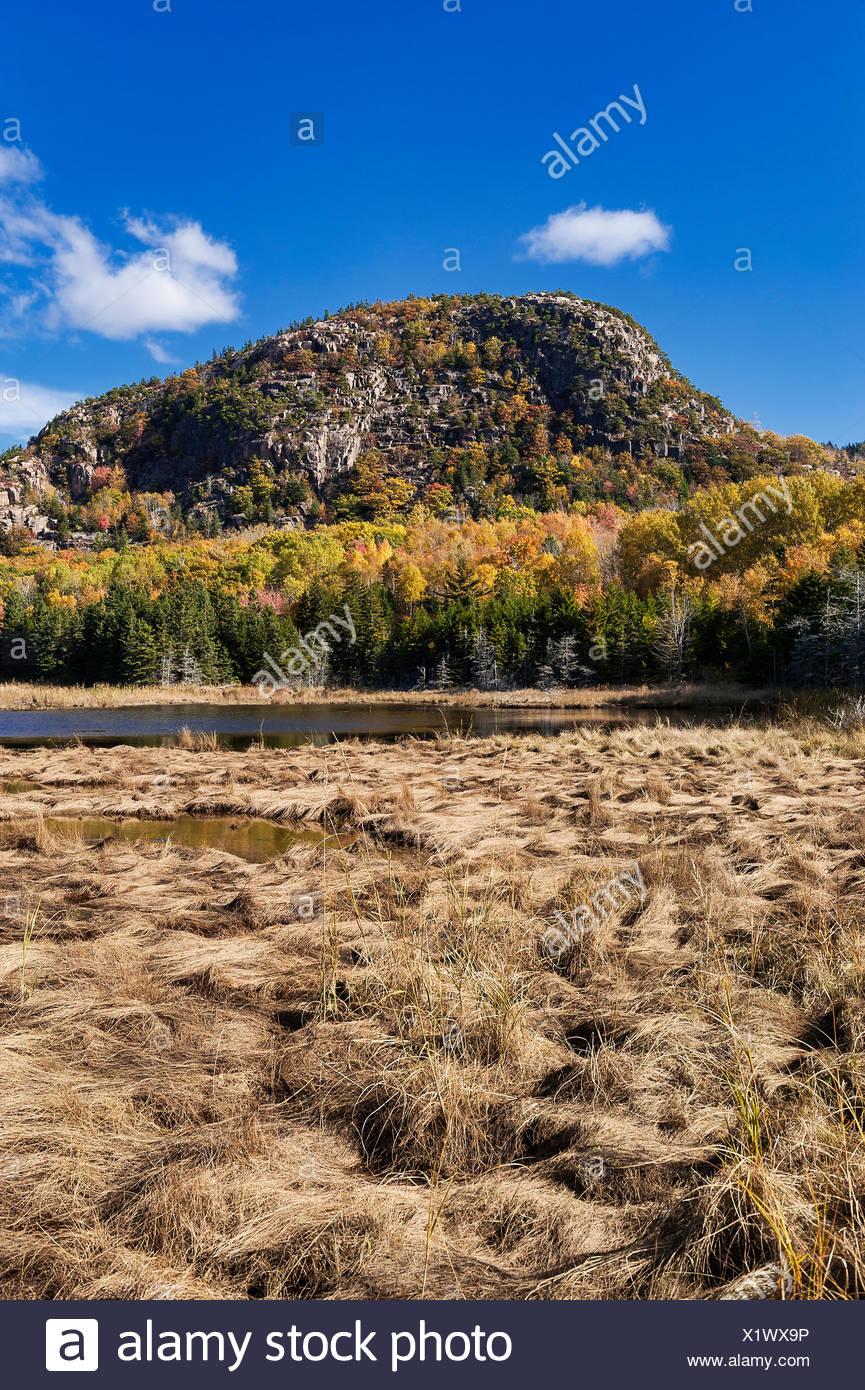 Bubble Mountain, el Parque Nacional de Acadia, la isla de Mount Desert, Maine, EE.UU. Imagen De Stock