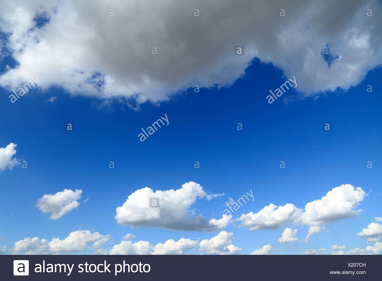 Cielo azul, blancas nubes cúmulos hinchados skies meteorología Weather antecedentes Imagen De Stock