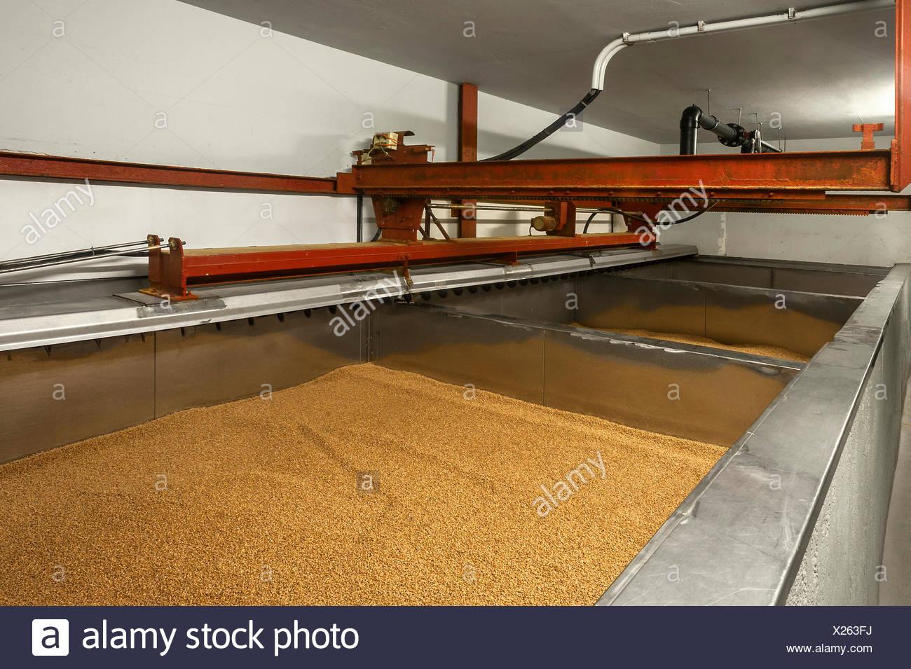 Pequeña cuenca remojo de la cebada para cerveza en una maltería, Baviera, Alemania Imagen De Stock