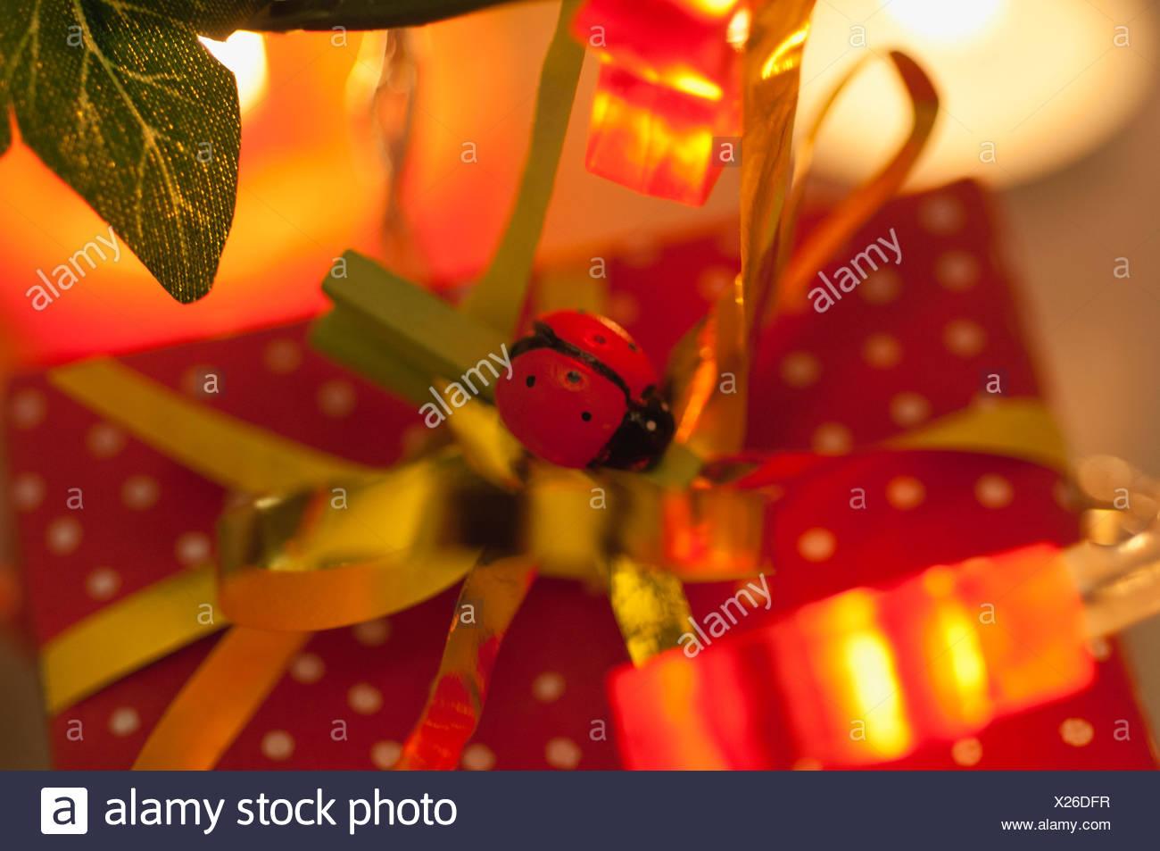Regalo de navidad decorado con mariquita Foto de stock