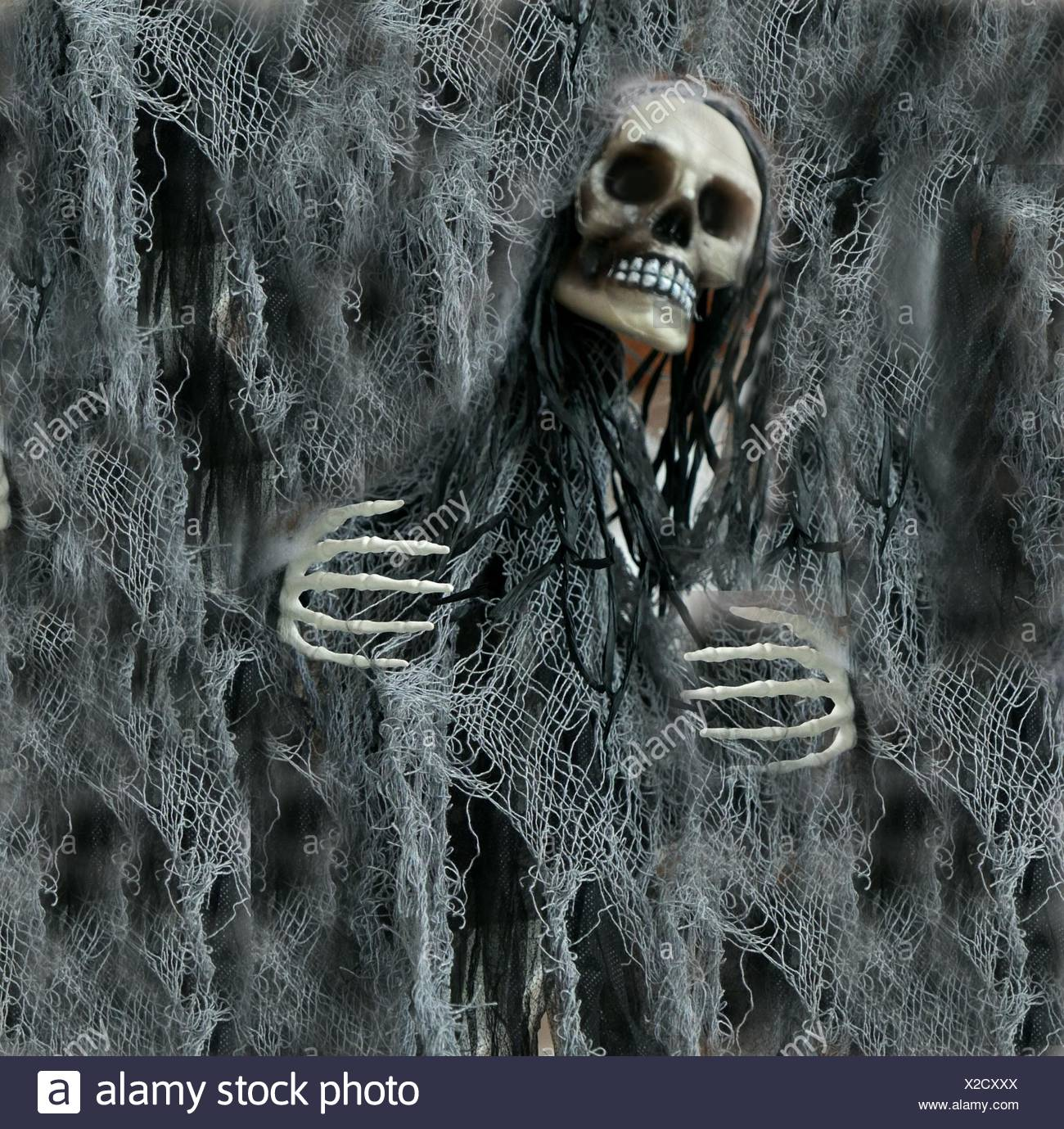 Imagen compuesta digital del cráneo humano y Net Imagen De Stock