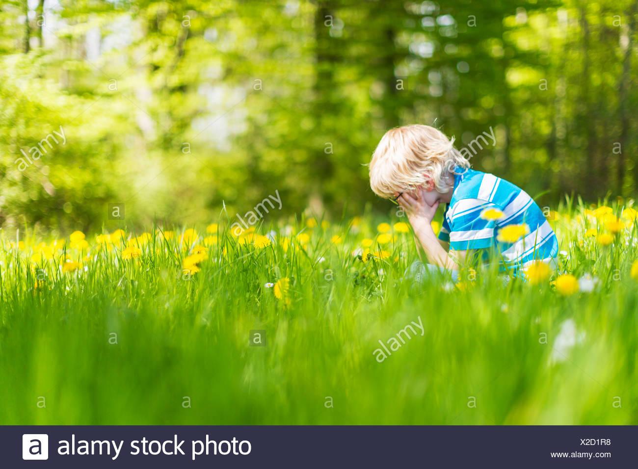 Muchacho sentado en el campo de hierba alta Imagen De Stock