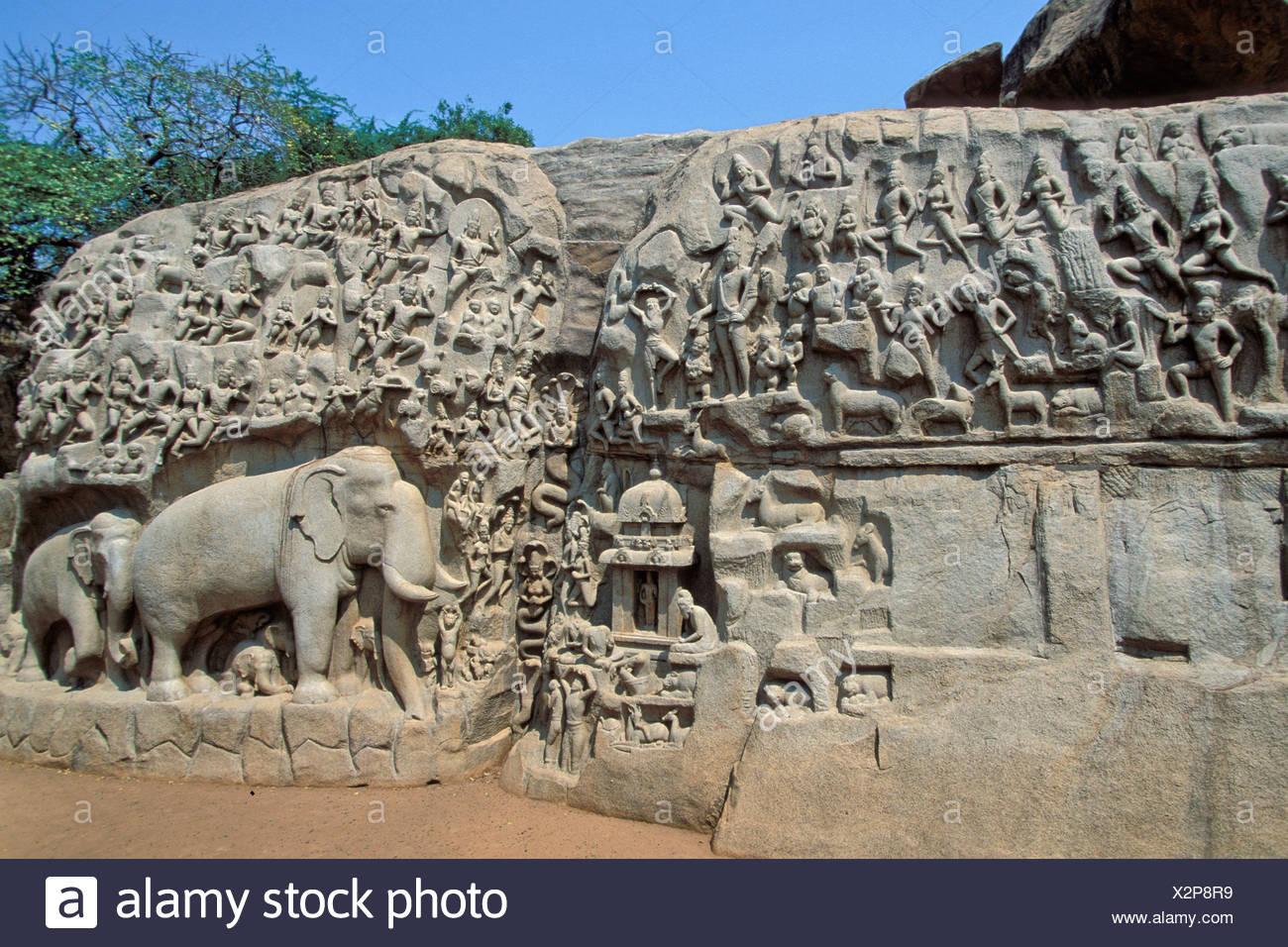 Bajorrelieve del descenso del Ganges o Arjuna la penitencia, Mahabalipuram o Mamallapuram, Tamil Nadu, India del Sur, India, Asia Imagen De Stock