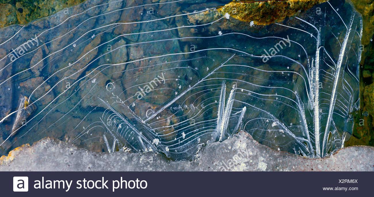Hojas de hielo en un lago de montaña en verano , Francia, Savoie, Parque Nacional de Vanoise, carro Imagen De Stock