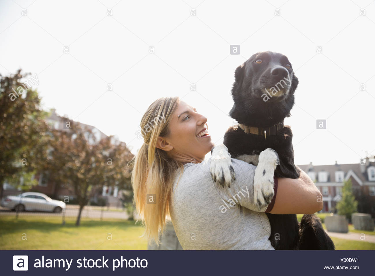 Hembra holding dueño de la mascota perro en park Imagen De Stock
