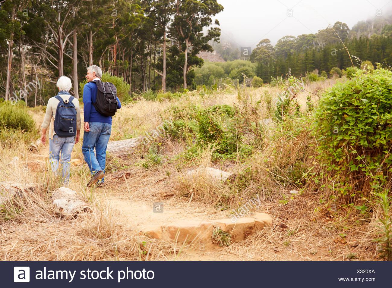 Las parejas ancianas caminando juntos en un bosque, vista posterior Imagen De Stock