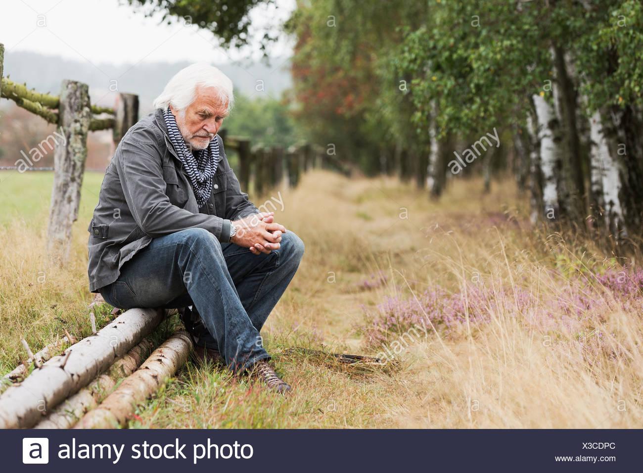Altos hombre sentado en log Imagen De Stock
