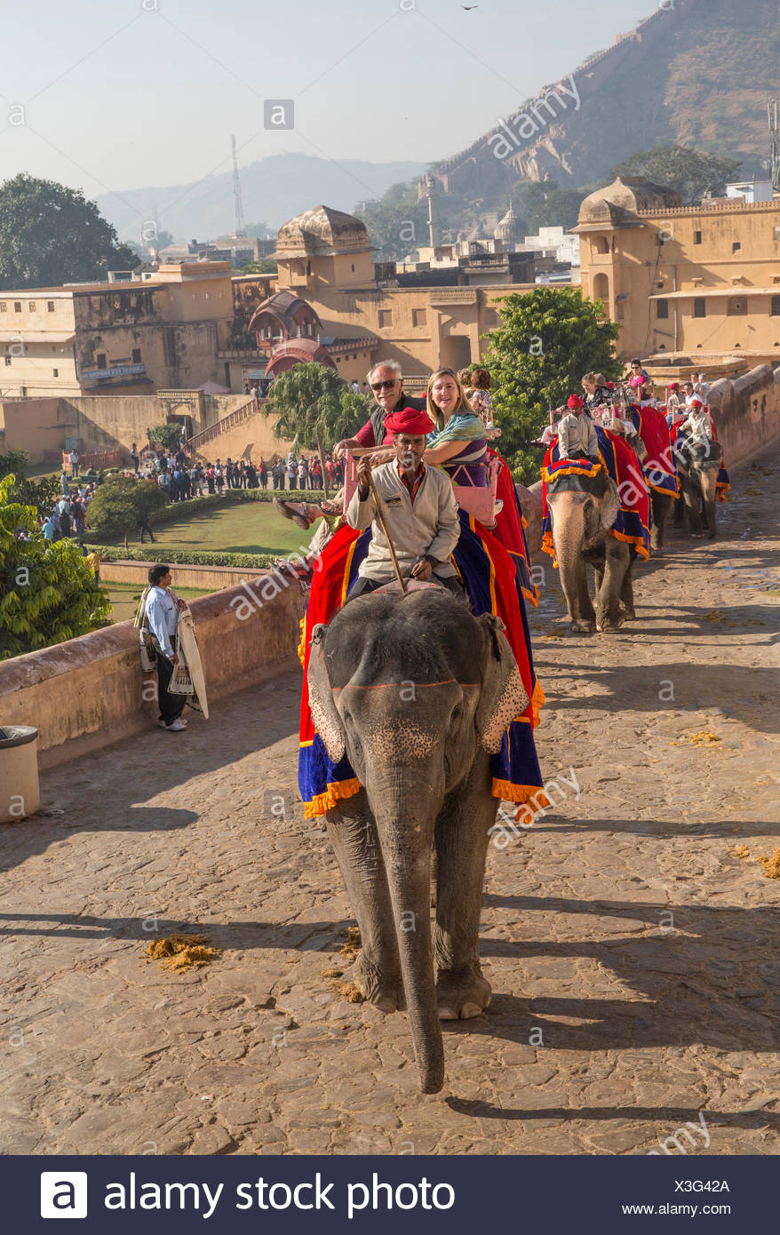 Los turistas, ride, Fort, ámbar, elefante, Asia, India, elefantes, Rajasthan, Jaipur, ámbar Imagen De Stock