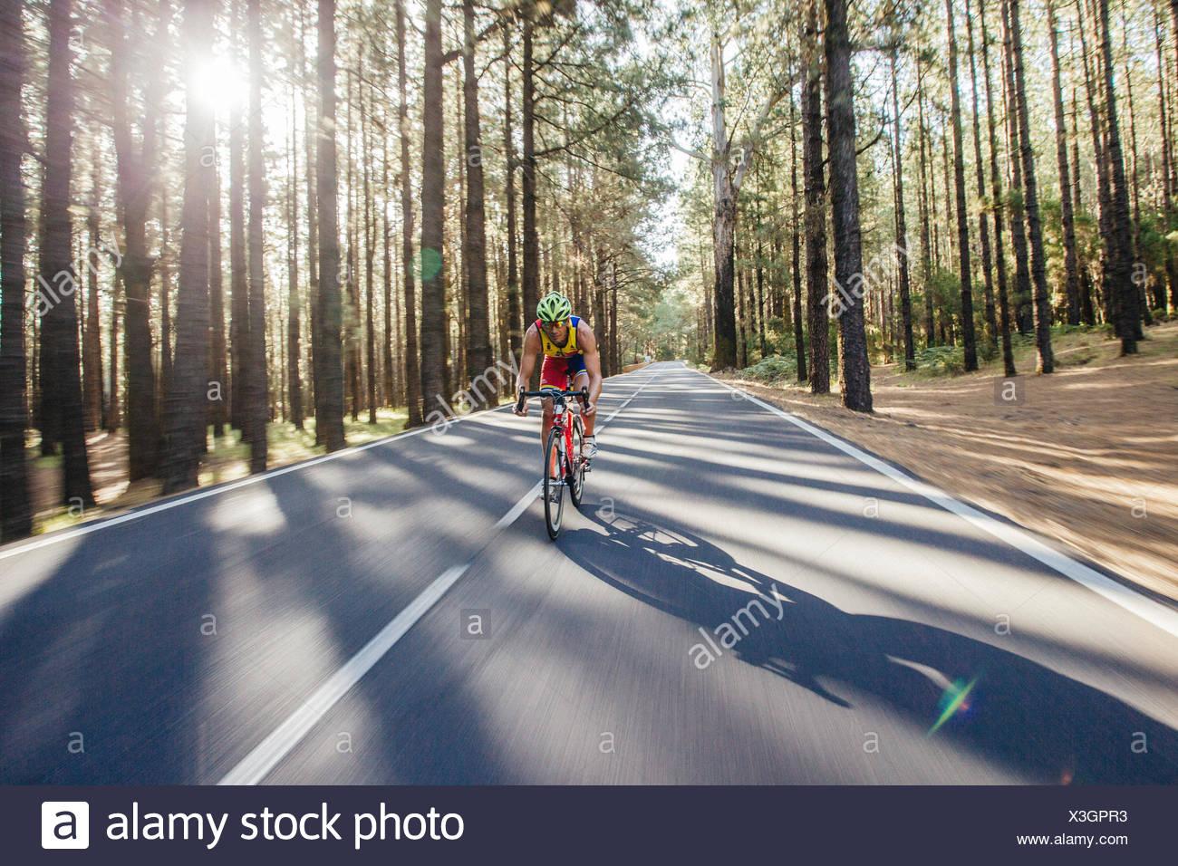 Un ciclista monta su bicicleta en un camino a través de un profundo bosque de pinos Imagen De Stock