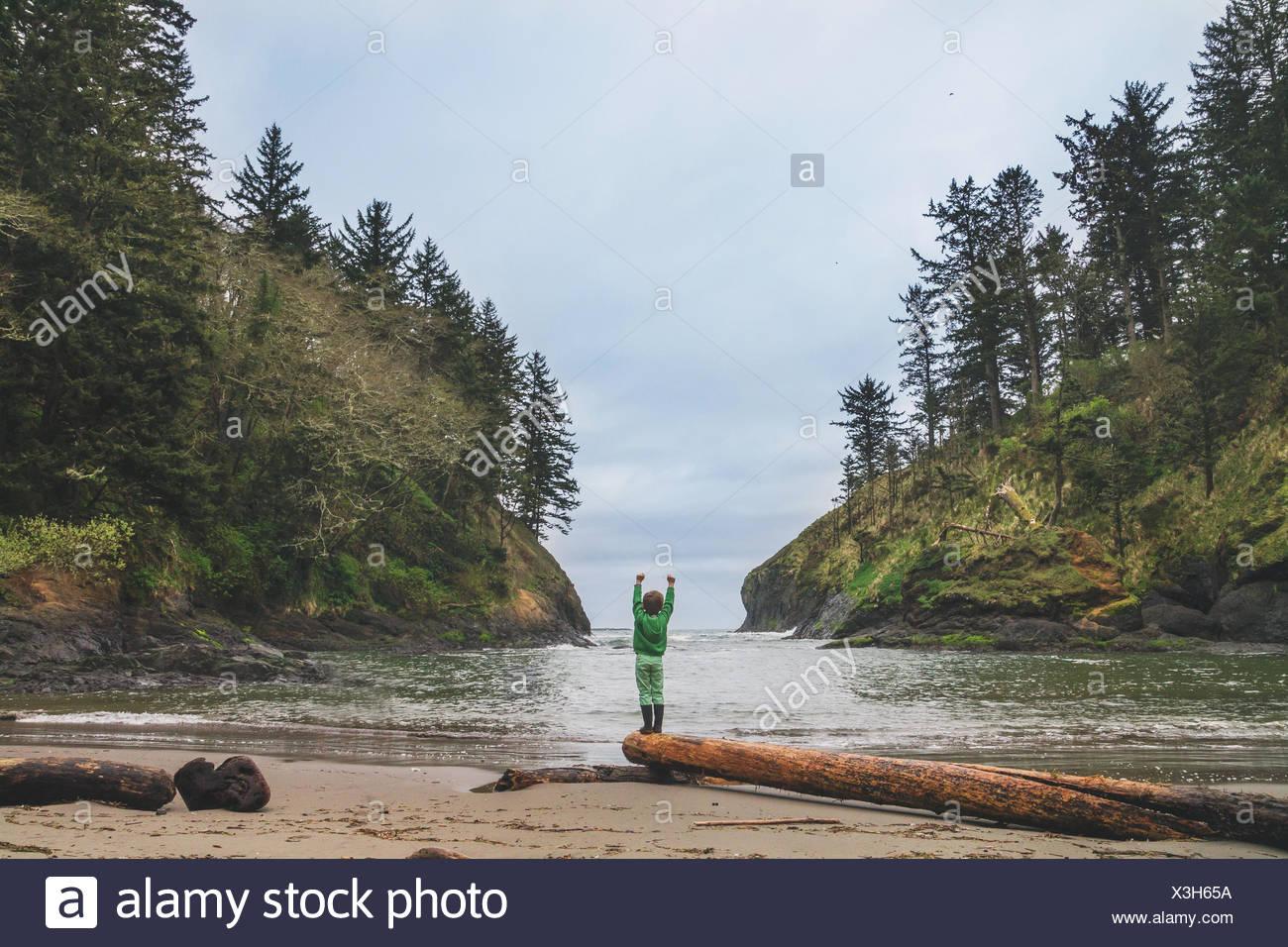 Chico parado en el Driftwood en la playa con los brazos levantados Imagen De Stock