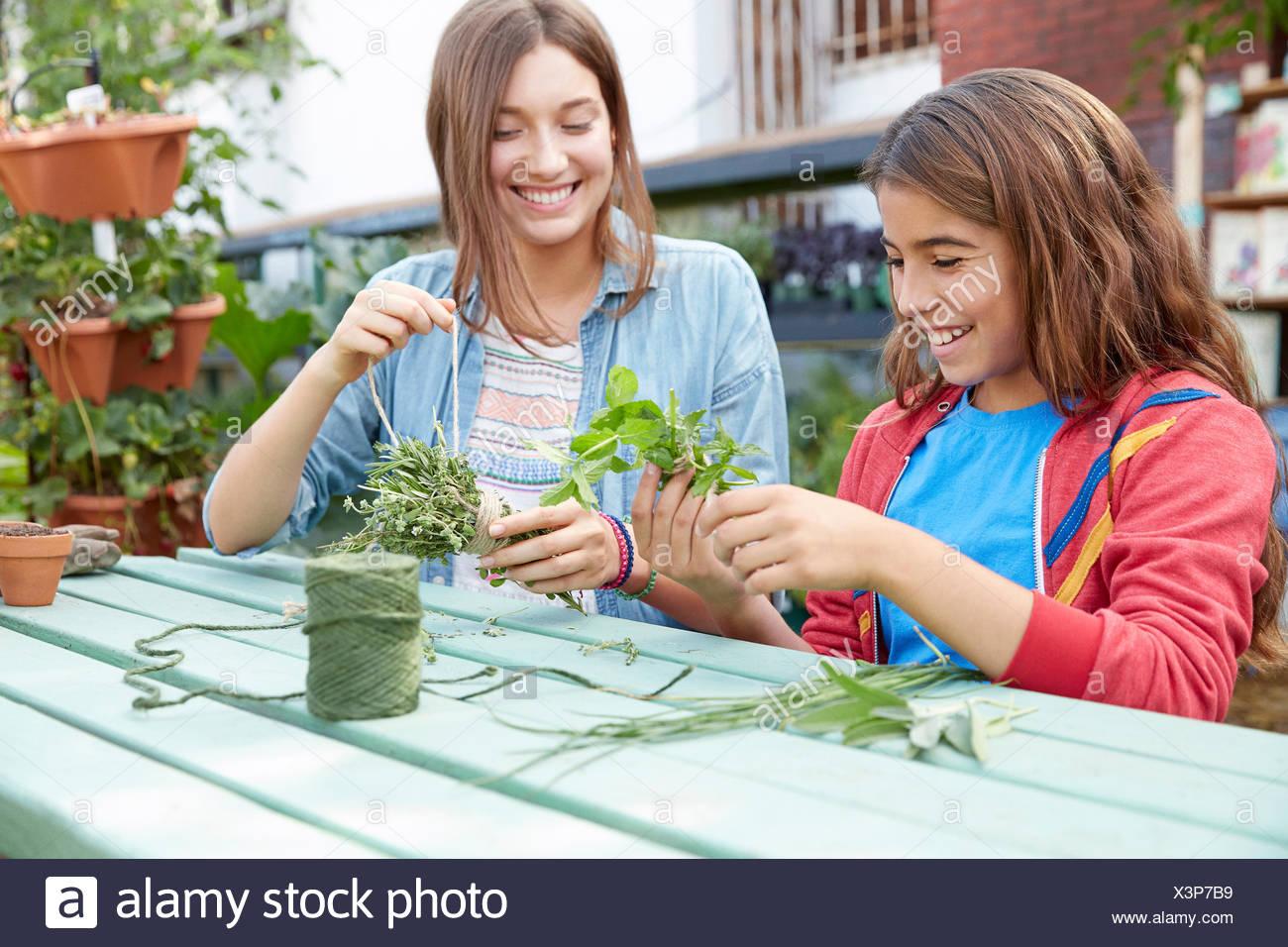 Hermanas latinas bundling hierbas en la mesa de jardín Imagen De Stock
