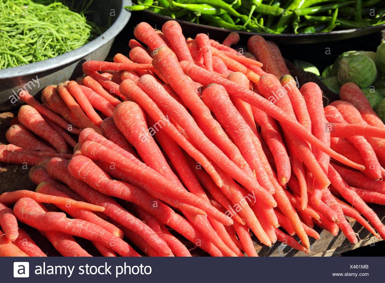 Zanahoria Roja Sobre El Mercado En India Fotografia De Stock Alamy Por esta razón, en la entrada de hoy. https www alamy es zanahoria roja sobre el mercado en india image277957579 html