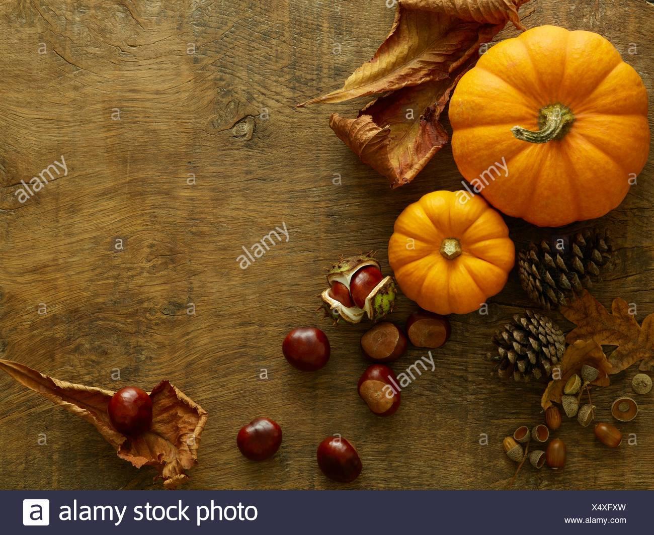 Calabazas, piñas, conkers y hojas de otoño, todavía la vida. Imagen De Stock