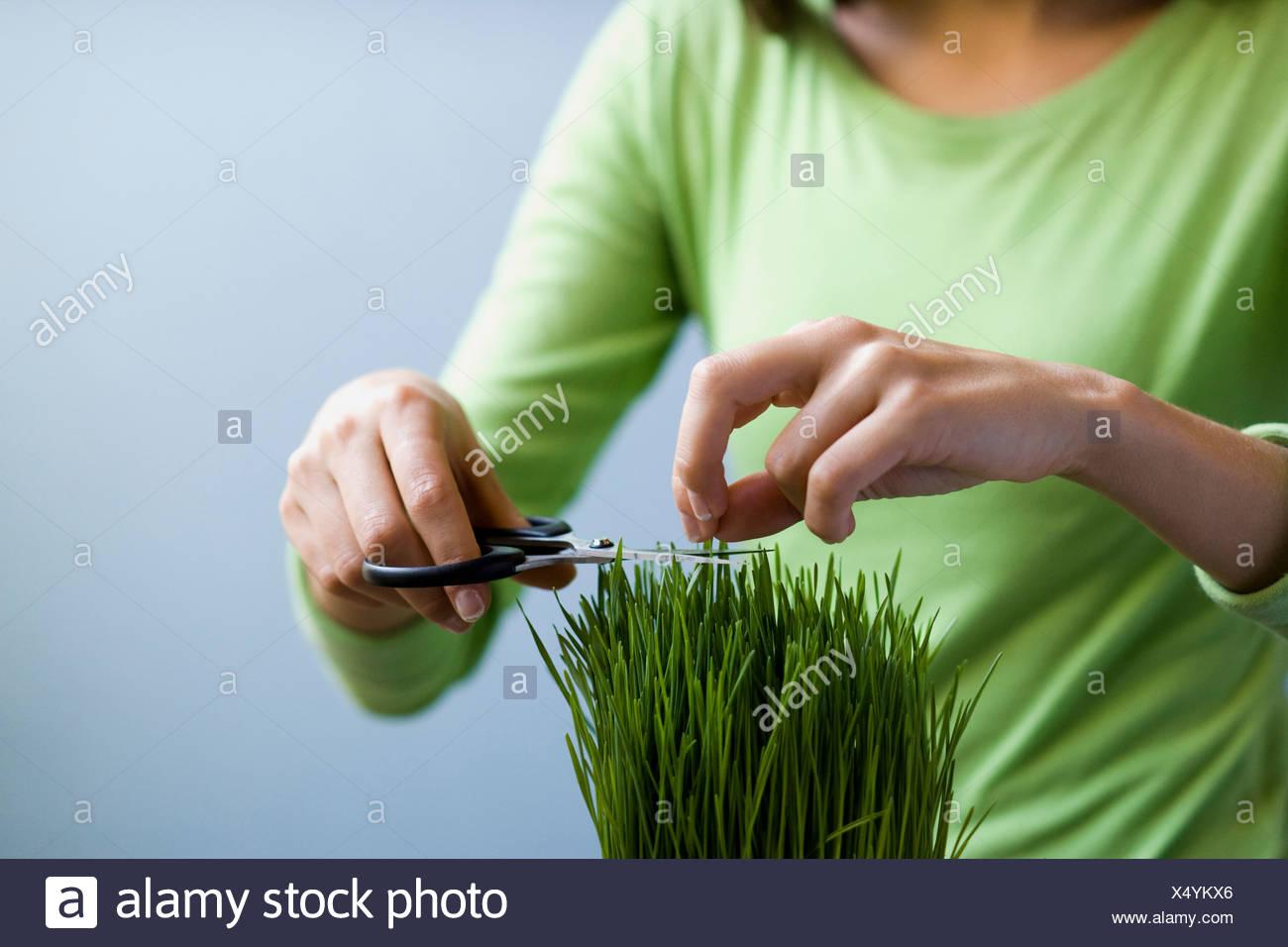 Mujer de hierba de fresado con unas tijeras. Imagen De Stock
