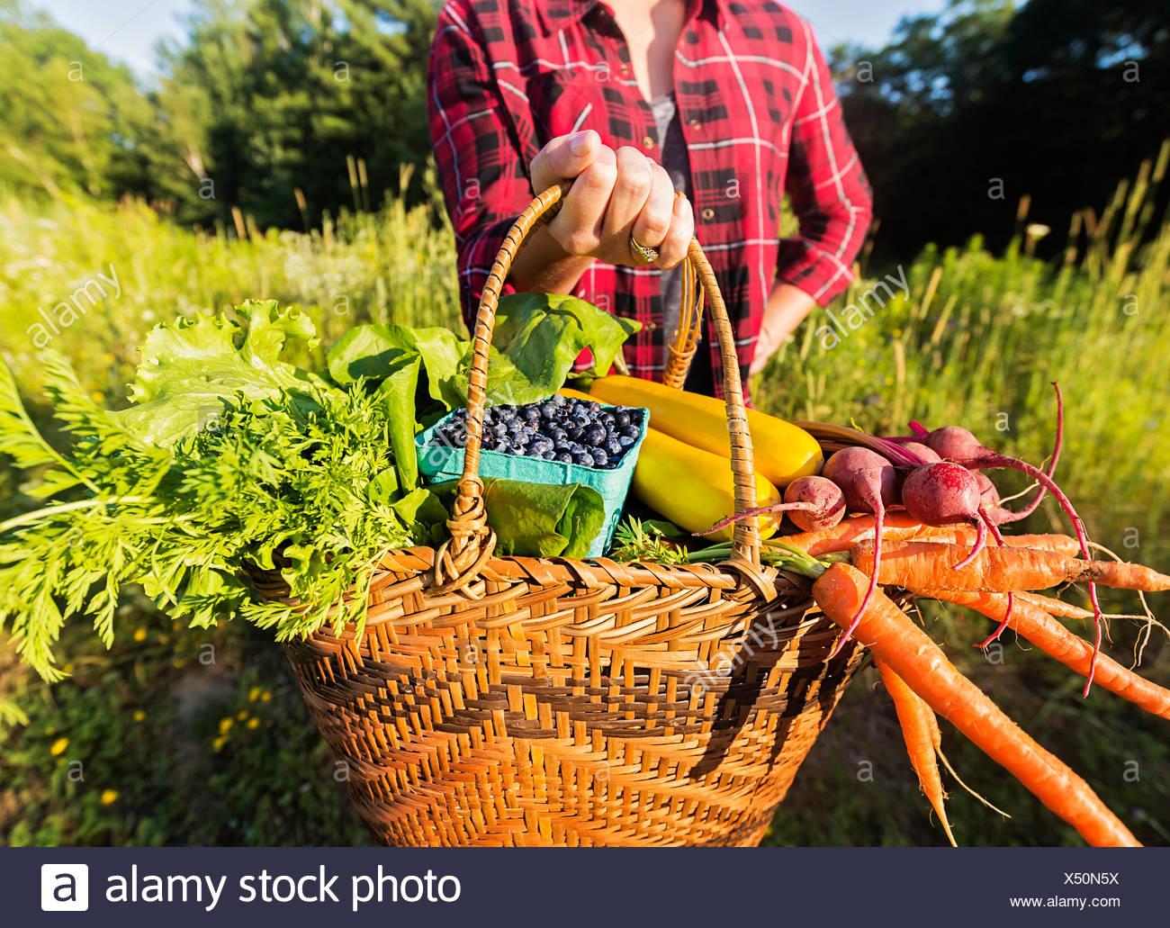 Sección intermedia de mujer sosteniendo una cesta con frutas y verduras Imagen De Stock