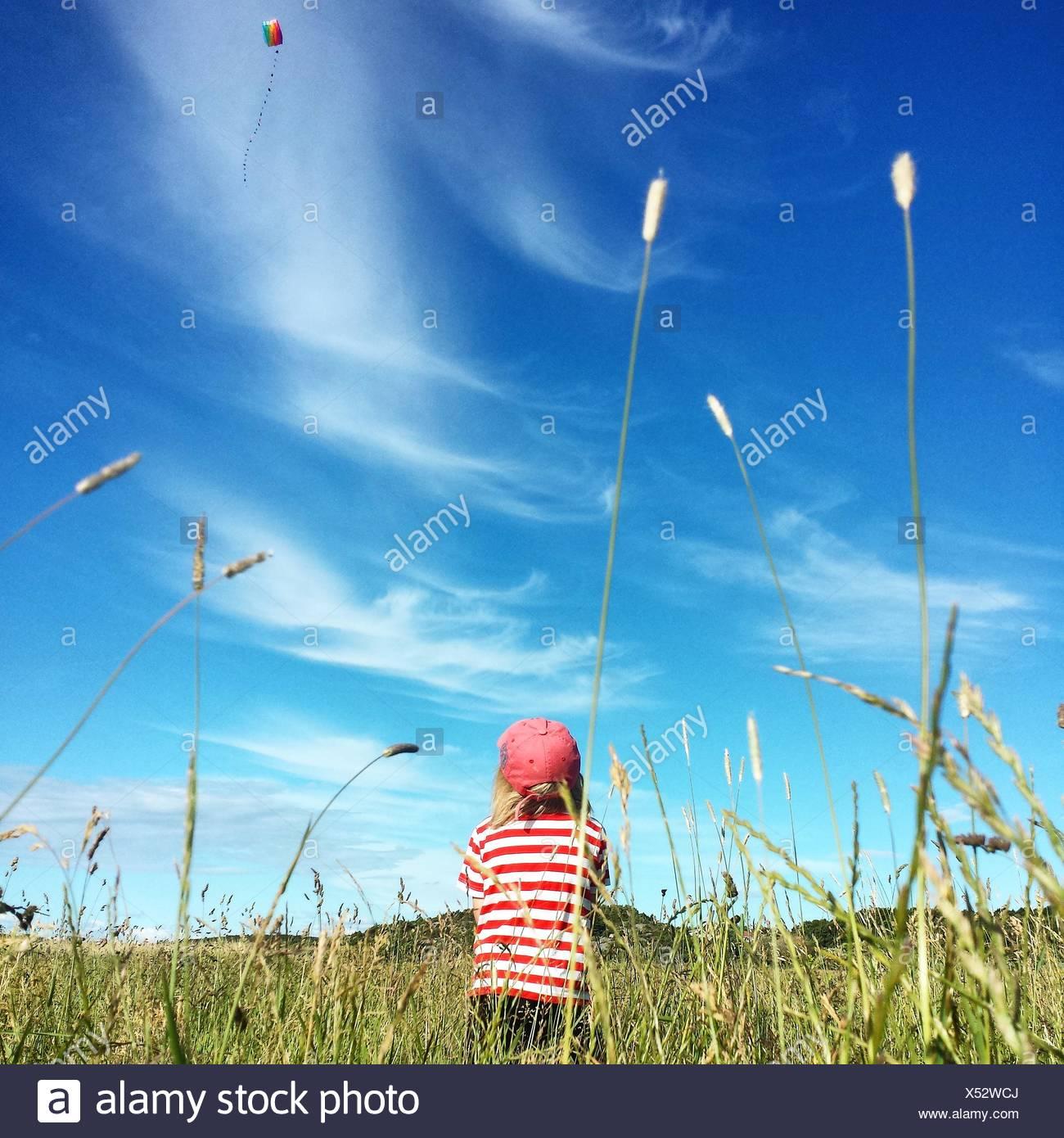 Vista trasera del niño volando Cometa en césped Imagen De Stock