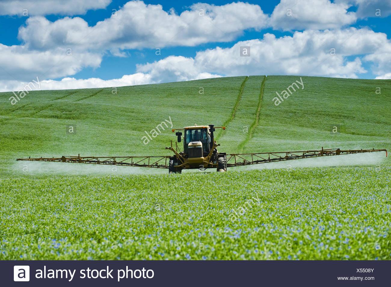 Una pulverizadora de alto despeje aplica una aplicación de fungicidas químicos a un campo de lino, Tiger Hills, Manitoba, Canadá Imagen De Stock