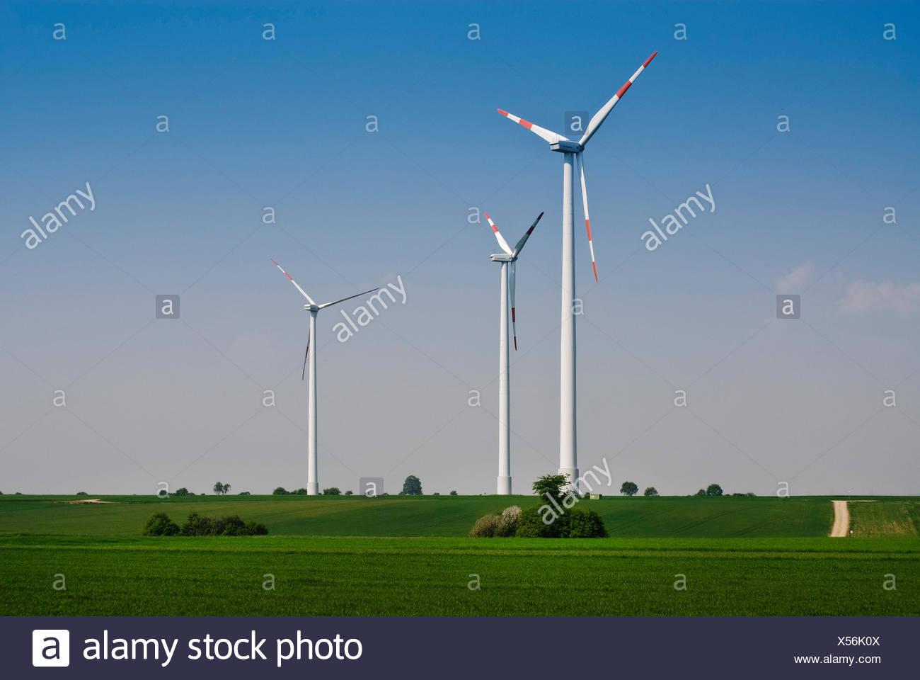 Las turbinas eólicas en el continente, la energía eólica, la energía renovable Foto de stock