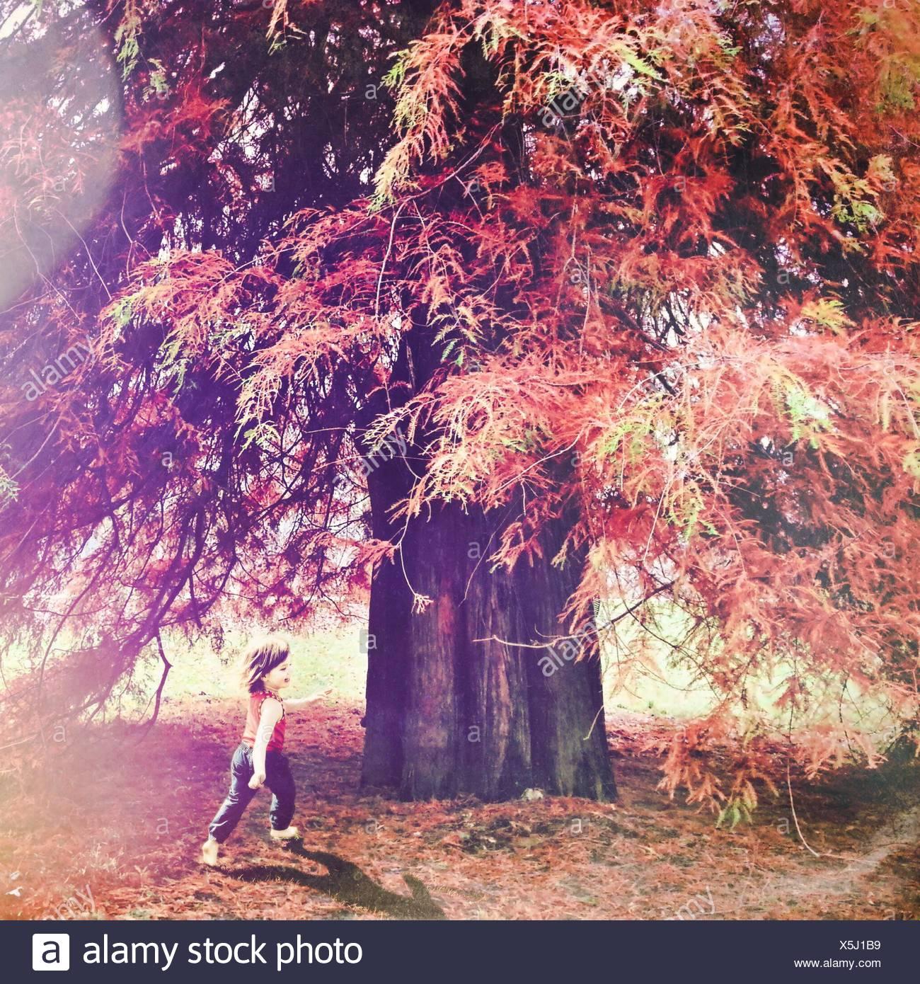 La longitud completa de la niña jugando en el parque durante el otoño Imagen De Stock