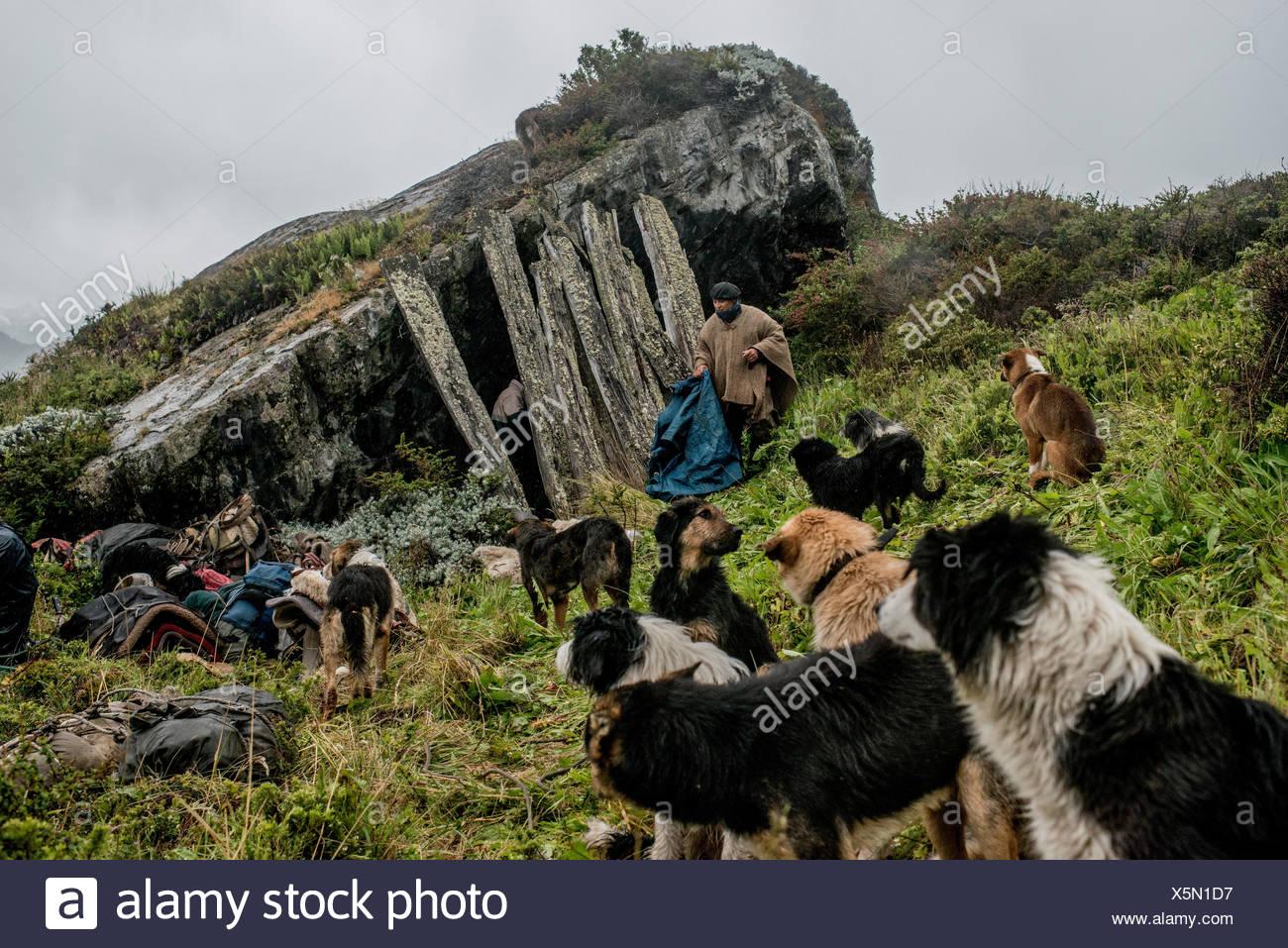 Gauchos encontrar un antiguo refugio bajo una roca para pasar la noche de camino de Sutherland, en la Península Antonio Varas. Imagen De Stock
