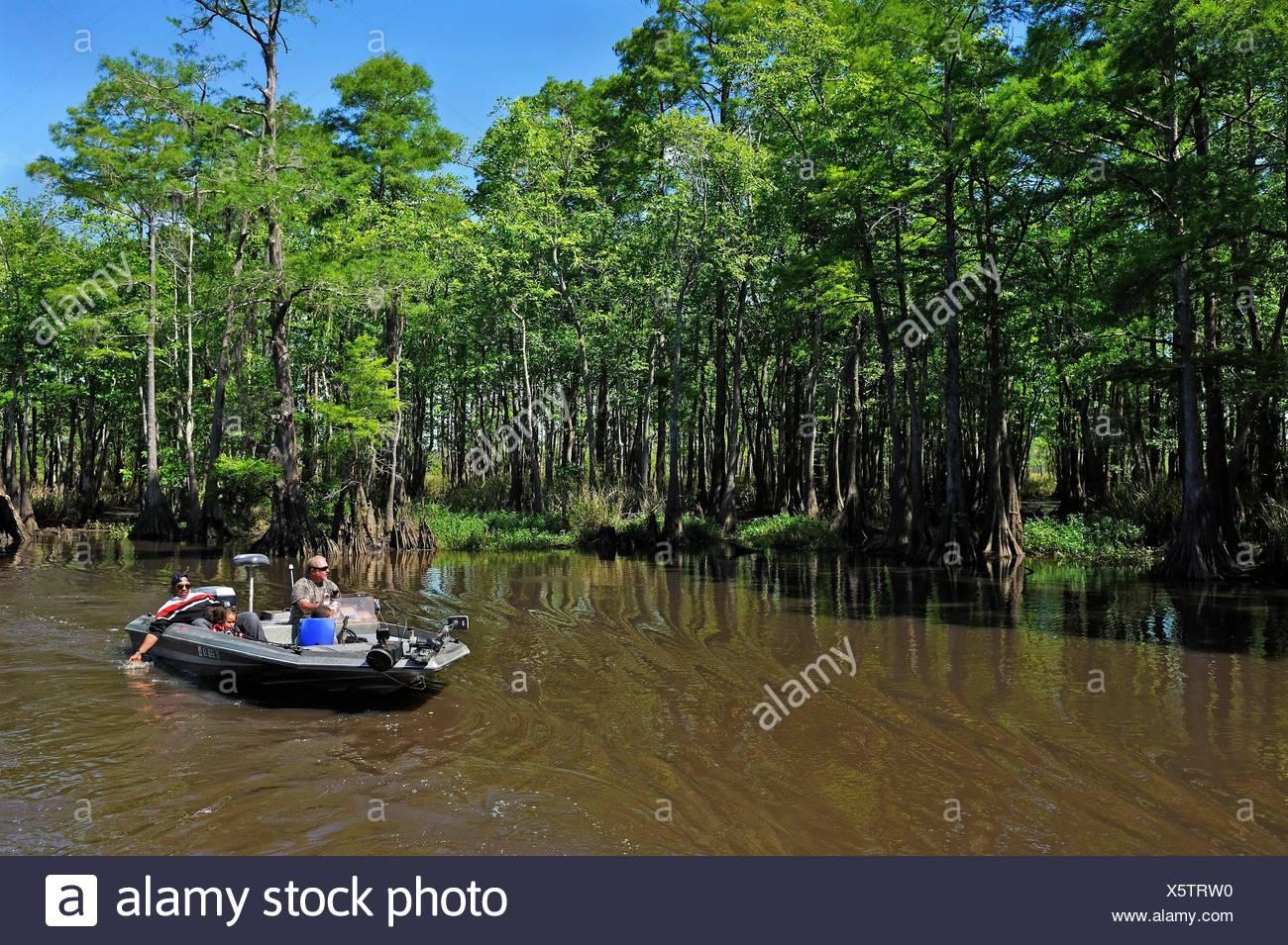 Viaje en bote a motor sobre un ciprés revestidos de canal del río Neches remanso, Beaumont, Texas, Estados Unidos de América, América del Norte Imagen De Stock