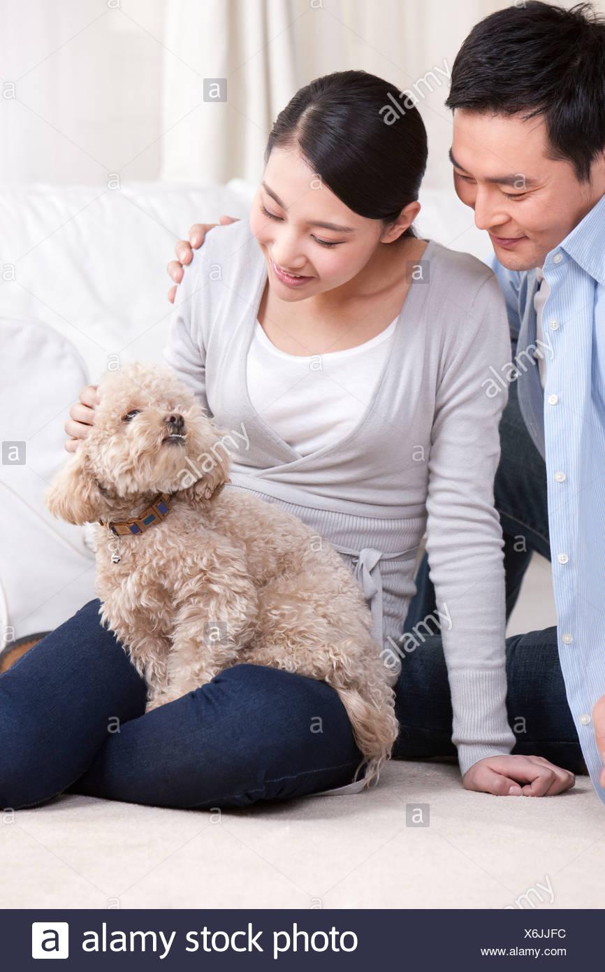Mujer joven con una mascota poodle de juguete Imagen De Stock