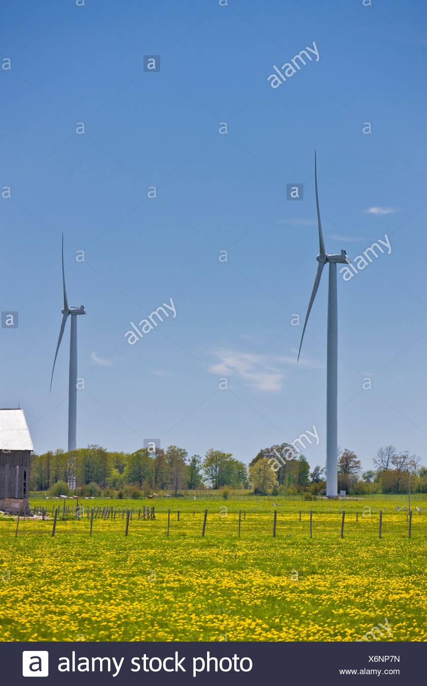 Eco-friendly turbinas de viento en la península de Bruce, en Ontario, Canadá Foto de stock
