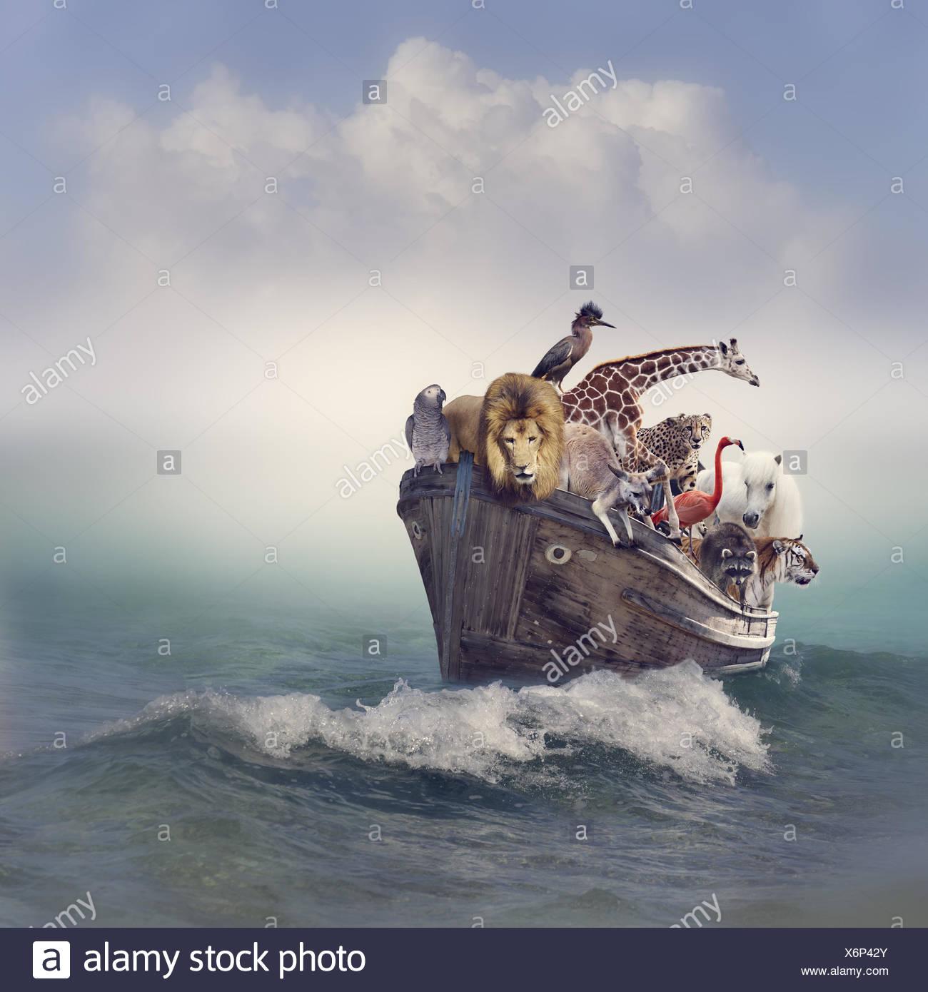 Animales en un barco Foto de stock