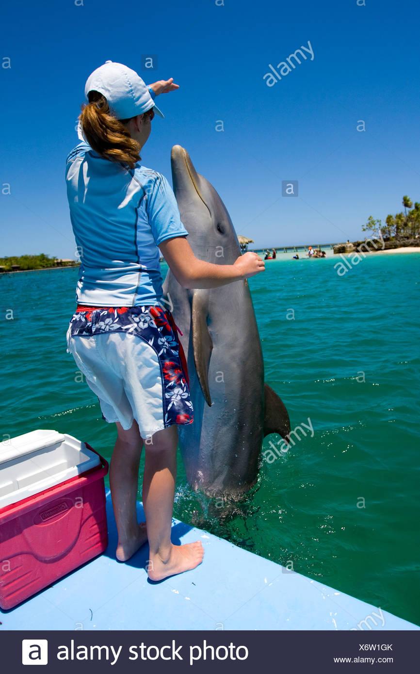 Niña de la escuela de formación de un delfín durante una lección de biología con un entrenador de delfines en Anthony's Key Resort, Roatán, Honduras centra. Imagen De Stock