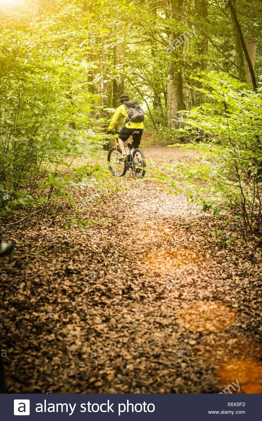 Vista trasera del macho maduro ciclista de montaña ciclismo en pista forestal Imagen De Stock