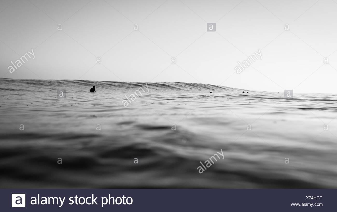 Grupo de surfistas esperando a coger una ola Imagen De Stock