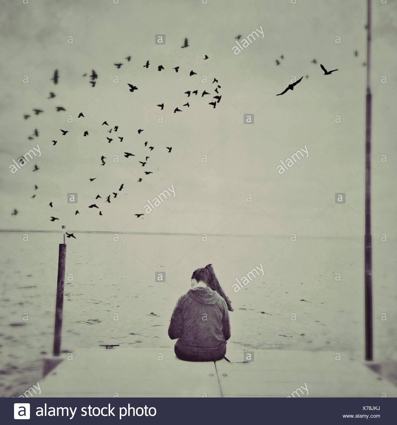 Vista trasera de una mujer sentada en el borde del muelle con aves volando sobre el mar Imagen De Stock