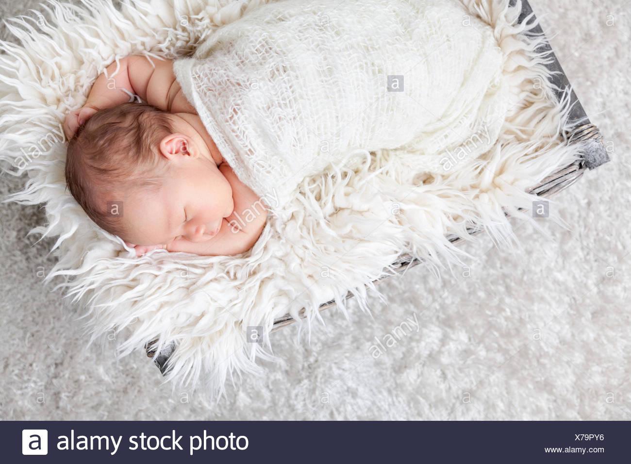 Canasta De Recien Nacido.Hermoso Recien Nacido Dentro De Una Canasta Foto Imagen De
