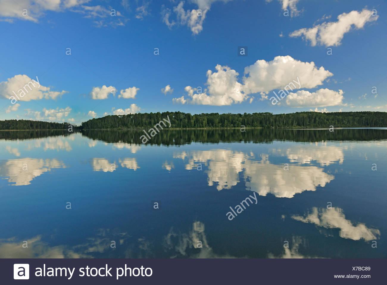 Las nubes cúmulos reflejado en Lac Seul Ear Falls en Ontario, Canadá Foto de stock