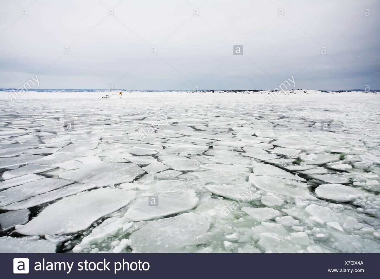 Capa de hielo agrietado Imagen De Stock