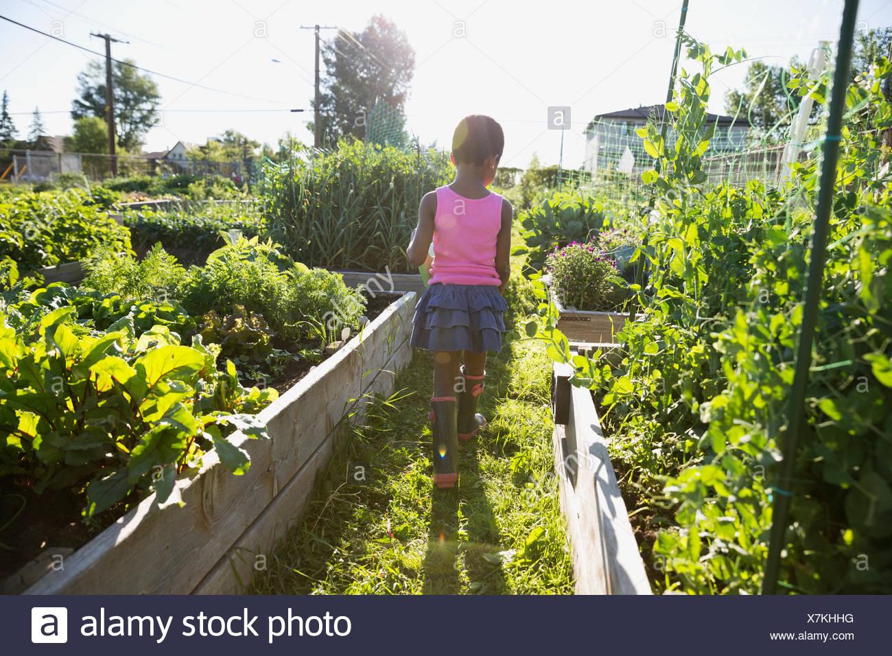 Chica caminando en el soleado jardín de vegetales Imagen De Stock