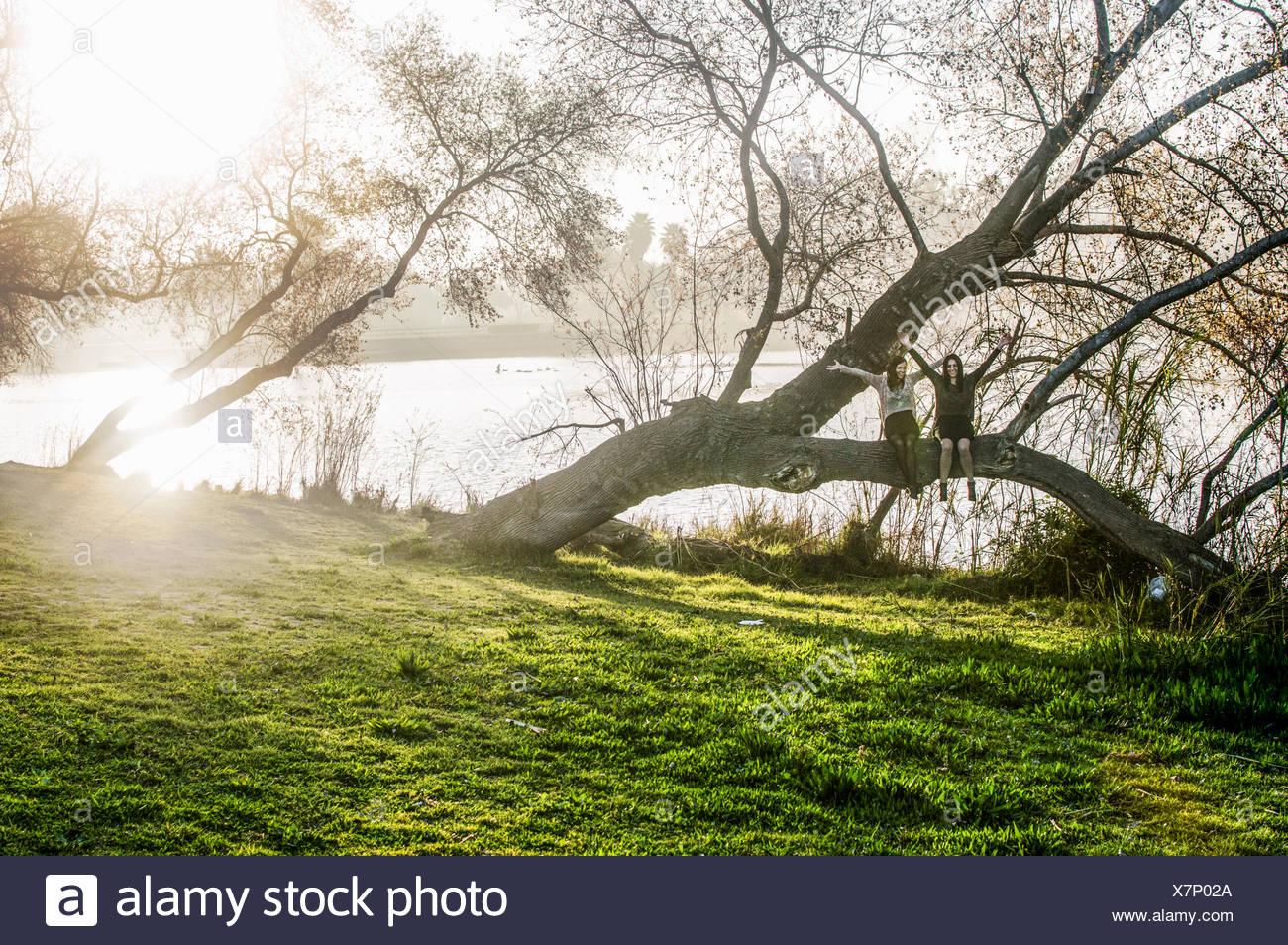 Dos jóvenes mujeres sentadas en el árbol, los brazos extendidos Imagen De Stock