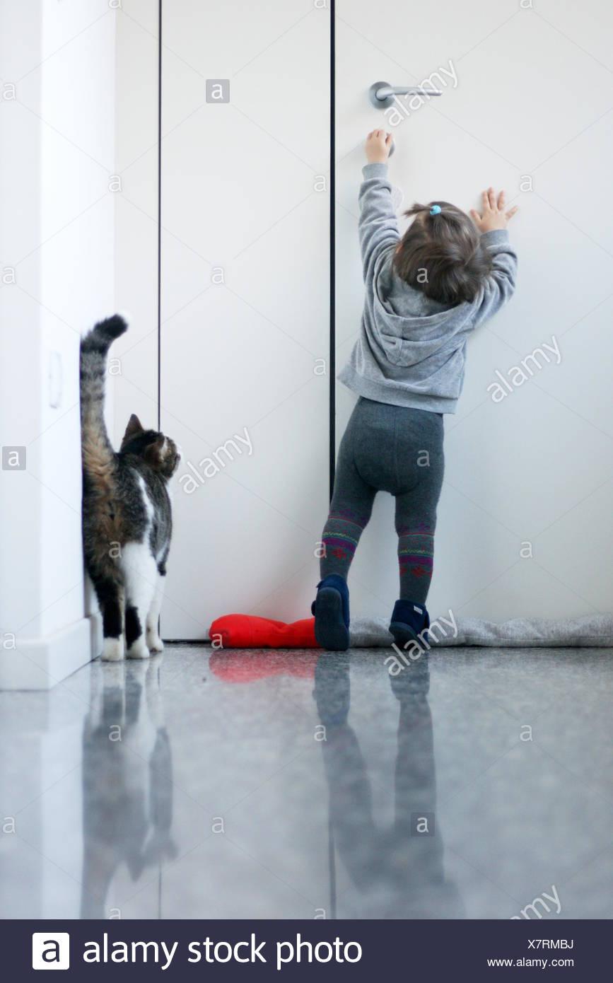 Baby Girl intenta abrir la puerta a su gato Foto de stock