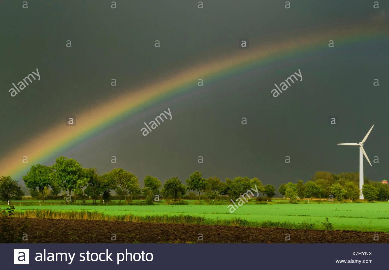 El viento rueda con rainbow acercarse al tormenta, Alemania, Baja Sajonia Foto de stock