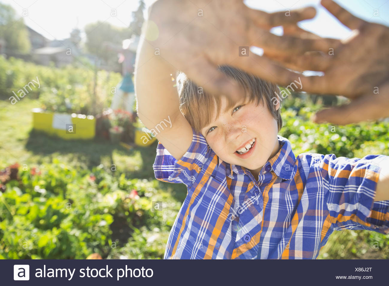 Chico con los brazos levantados en jardín comunitario permanente Imagen De Stock
