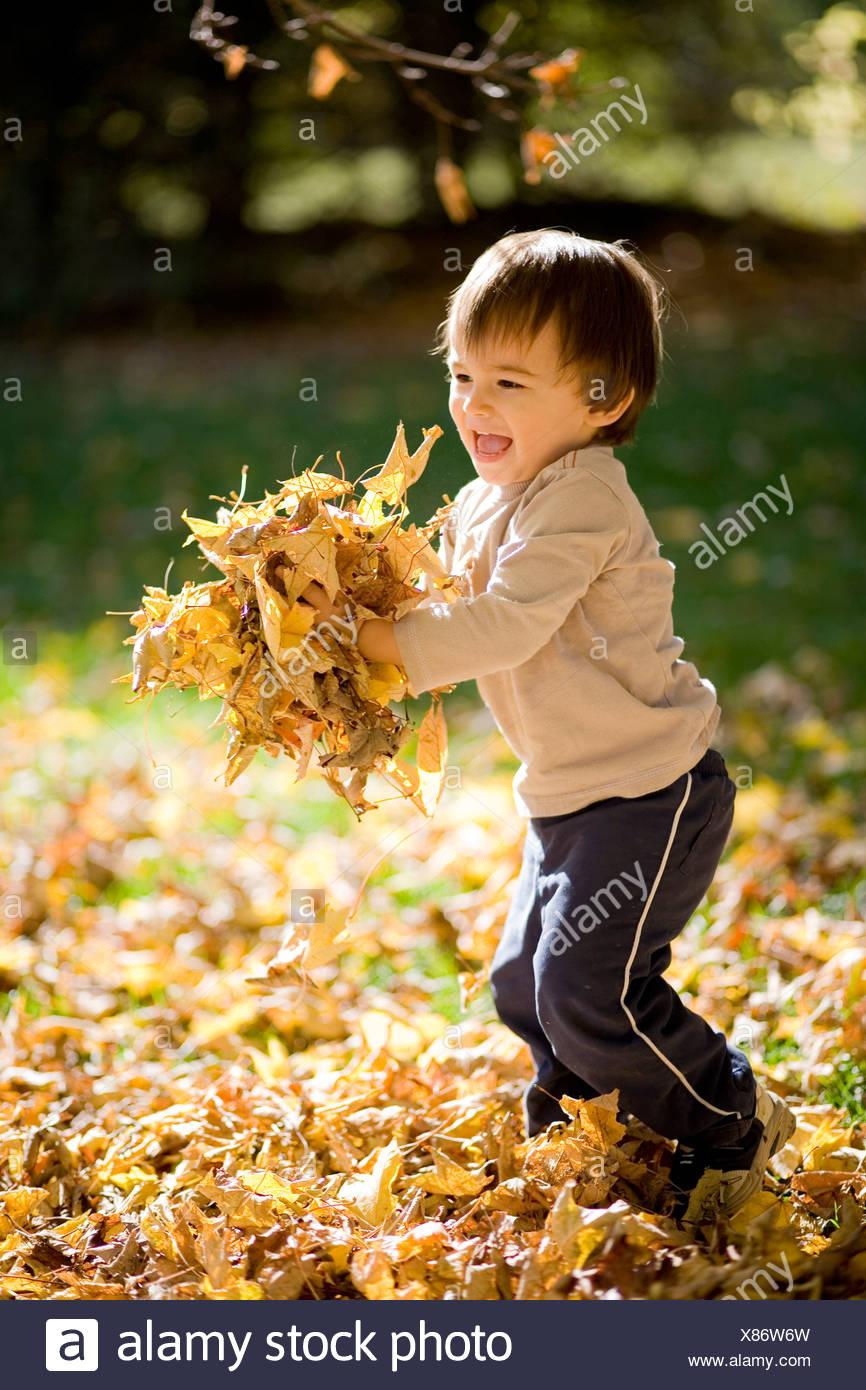 22 meses eurasion niño jugando en un montón de otoño las hojas de otoño, Montreal, Quebec, Canadá. Foto de stock