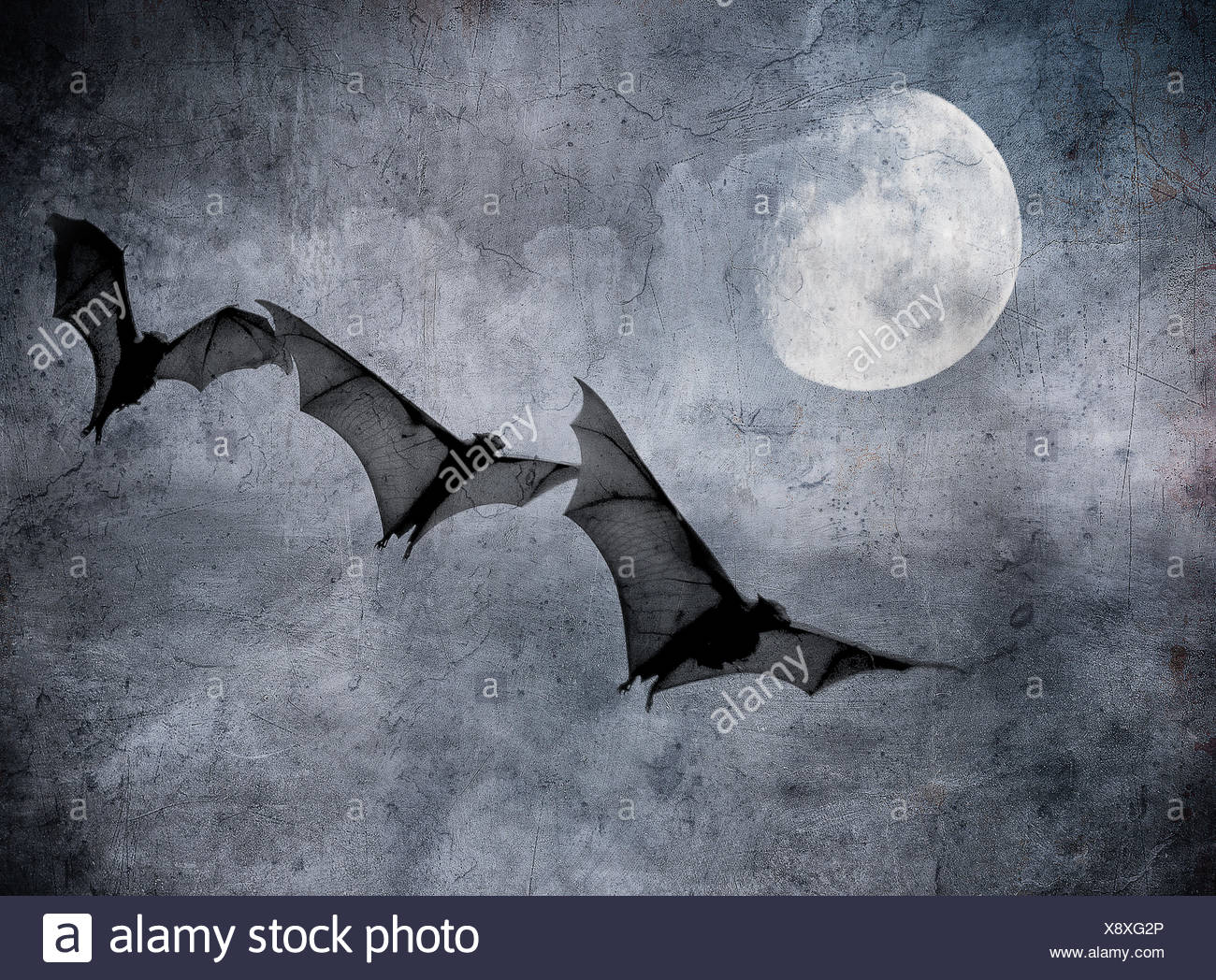Los murciélagos en el oscuro cielo nublado, perfecto de fondo de Halloween Imagen De Stock
