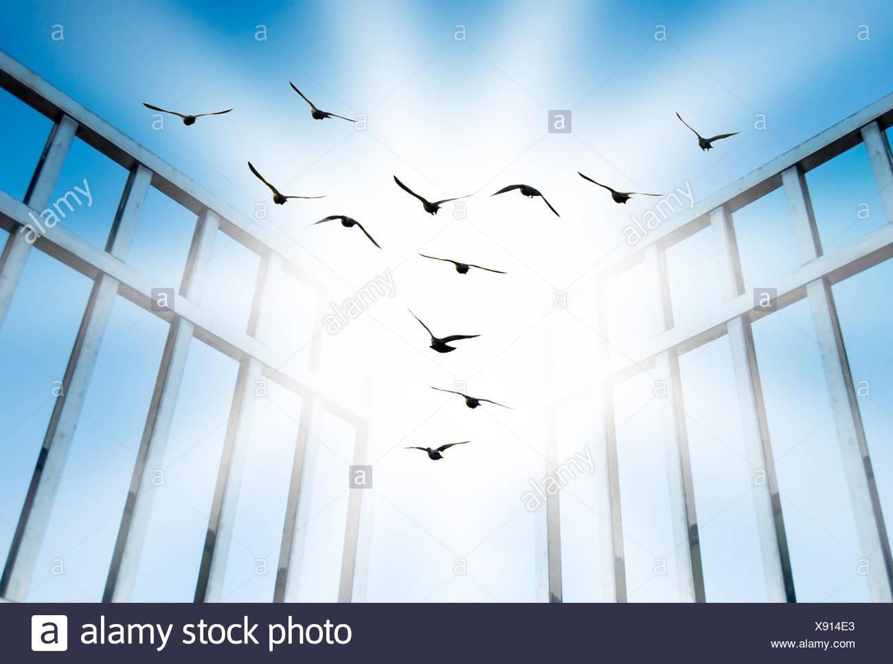 Volar superar la difícil gate Imagen De Stock