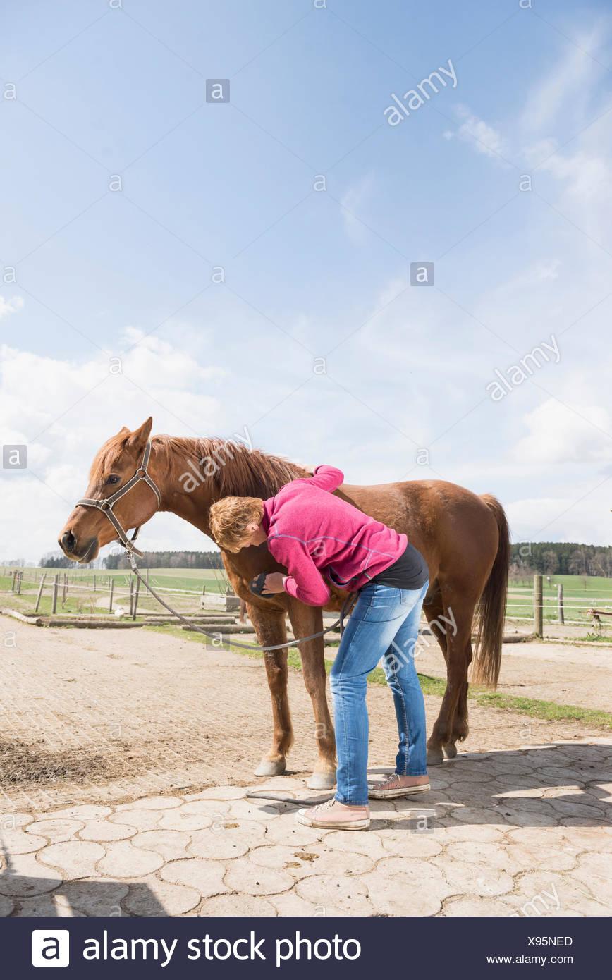 Mujer arreglar un caballo en Rancho Baviera Alemania Foto de stock