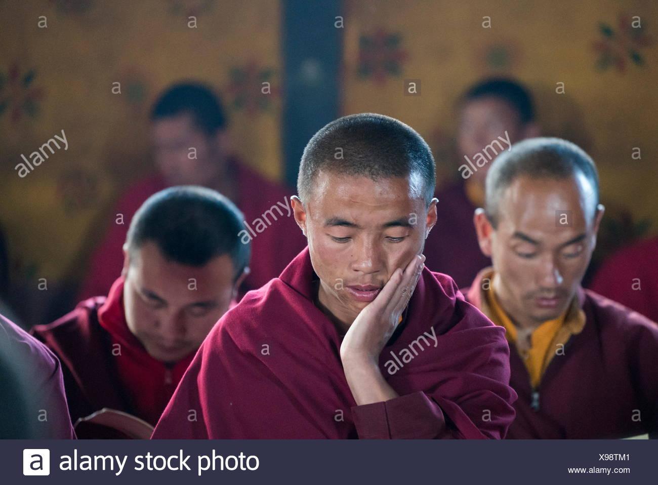 Monjes realizan una aspiración oración de Samantabadra Kuntuzangpo En la Shedra Gangtey en el valle de Phobjikha, Bhután. Imagen De Stock